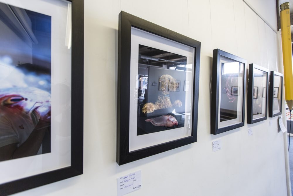 Women, Art, Food - Exhibition, May 2016