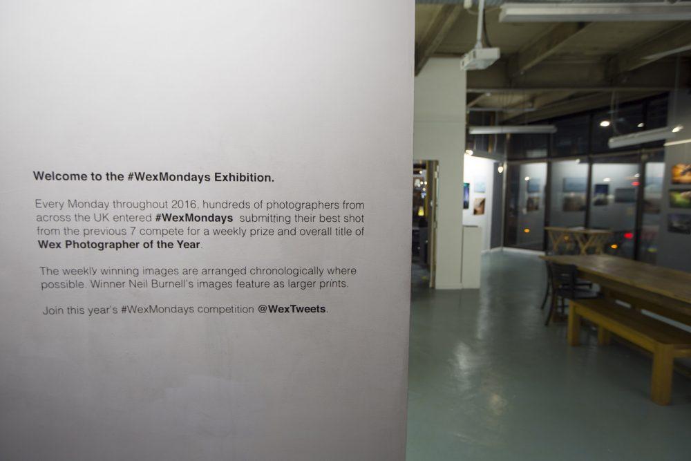 #WEXMONDAYS Exhibition