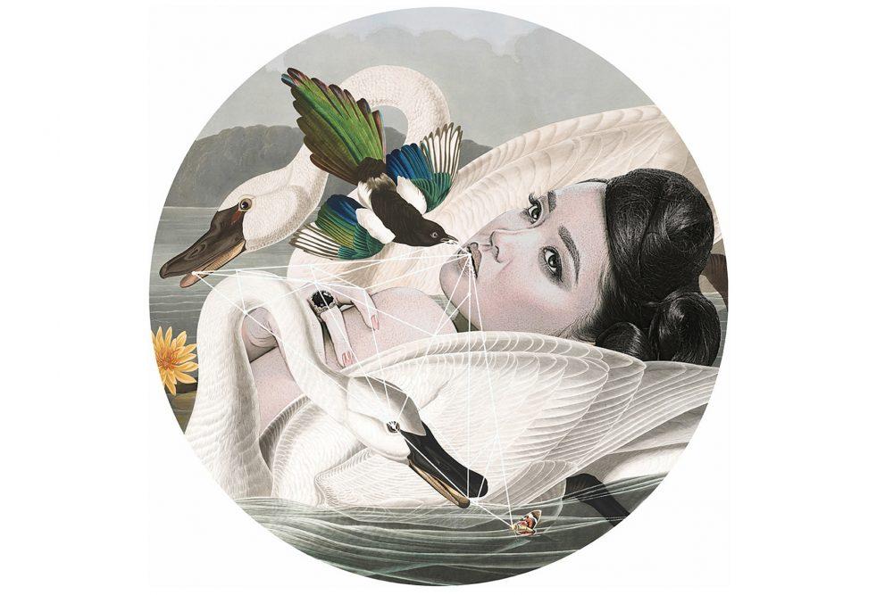 Alexandra Gallagher, Birds with Birds